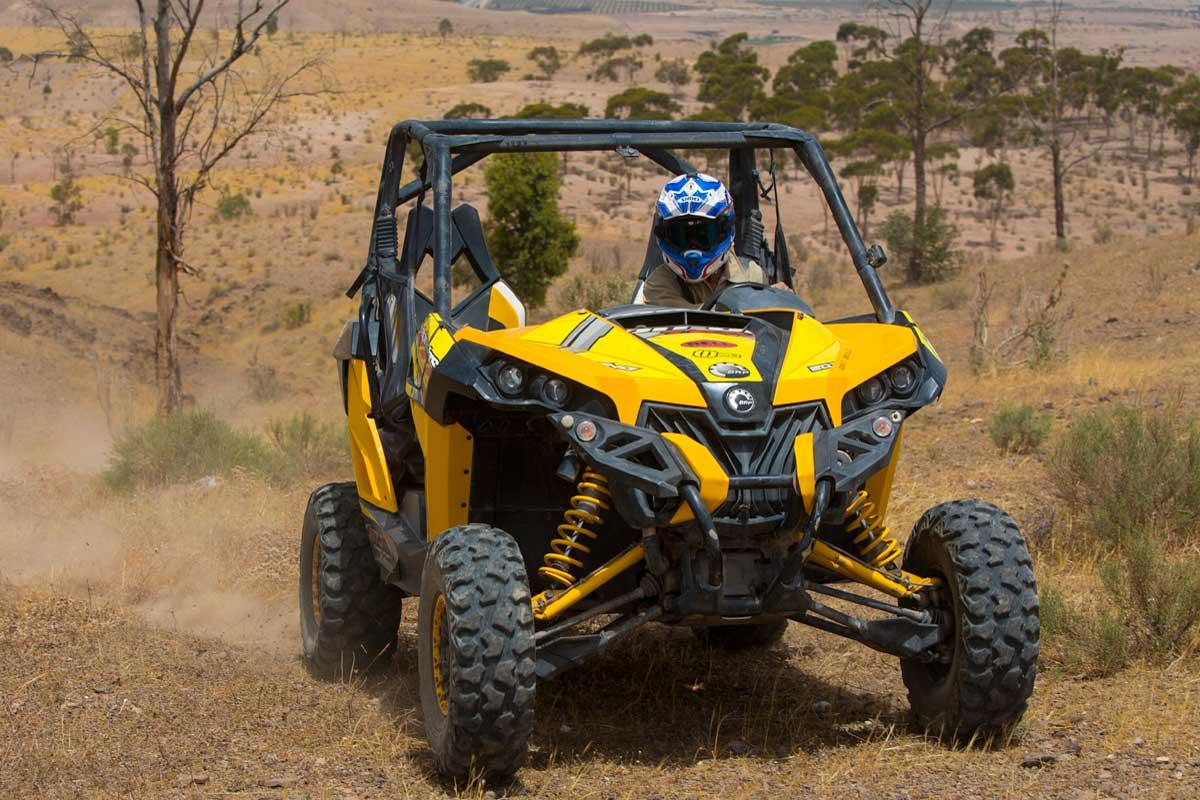 Quad-Buggy-Desert